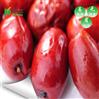 可商用可家用空气能红枣大枣烘干设备