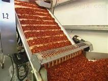 番茄圣女果清洗流水线连续式生产加工设备