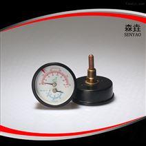 WHT-12S温度压力一体表