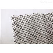 宁津厂家定做塑料网带 食品不锈钢马蹄链
