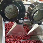 瑞洋機械紅棗烘干機
