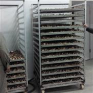松茸烘干機空氣能蘑菇烘干設備