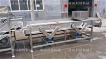 利特厂家供应鱼腥草清洗机中药材清洗设备