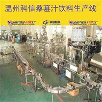 成套桑葚果汁饮料生产线厂家桑葚深加工设备