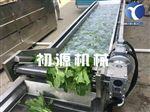 新一代喷淋清洗图片果蔬气泡清洗机厂家定制