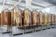 八代200型酿酒设备