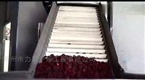 专业制作大型大枣循环干燥机设备