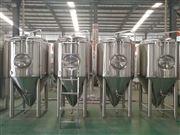 JNPJ-0.5日产500L精酿啤酒生产线
