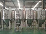 日產500L精釀啤酒生產線