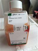 GIBCO间充质干细胞MSC专用胎牛血清