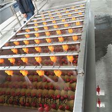 3000型土豆毛辊清洗机 厂家直销限时特价