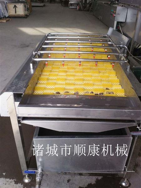 红萝卜毛辊清洗机 厂家直销限时特价