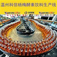 成套杨梅酵素制作设备厂家 中小型酵素发酵设备