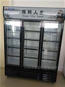 开封商丘饮料柜啤酒柜厂家定做立式冷藏展柜