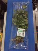 叶菜类蔬菜包装机