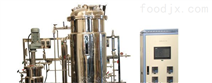 30-300L两级发酵罐