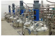 FZ-E型全自动发酵罐