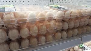 煮熟鸡蛋蛋白增至150倍 新技术有望用于食品行业