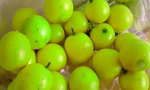 水果竟不能鲜食 清洗、烘干设备助其发挥价值