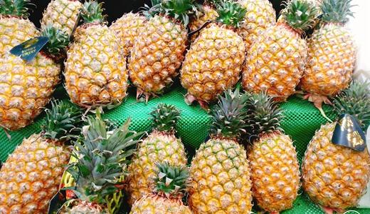 菠萝遭受低价寒冬 且看分选、超滤设备如何化解
