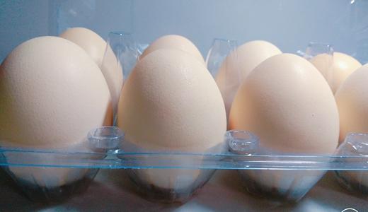 雞蛋鮮食受市場波動影響大 深加工品類現代化生產