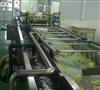 QX-3000型芸豆清洗机 西蓝花清洗流水线