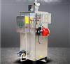 天然氣蒸汽鍋爐全自動蒸汽發生器